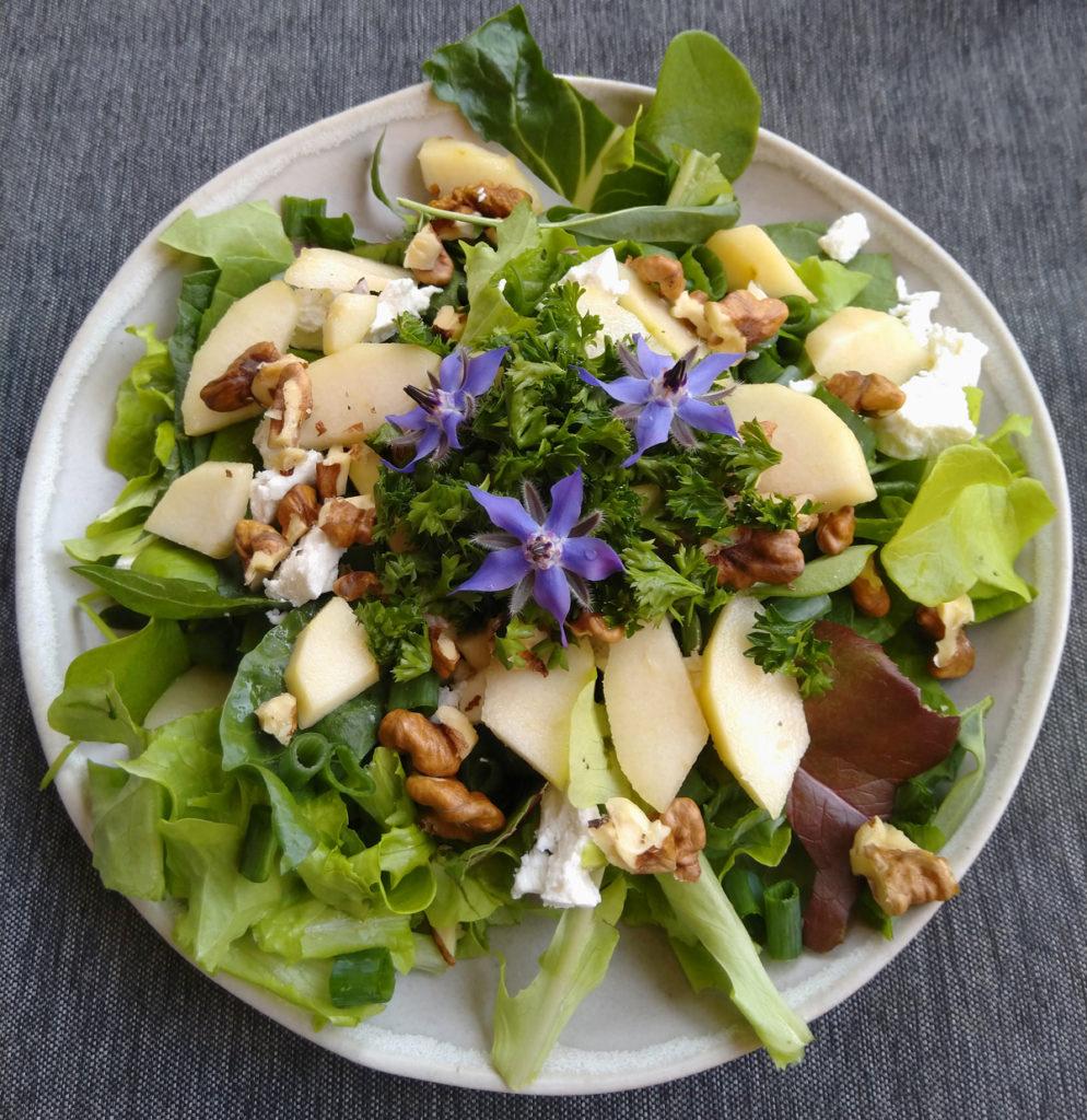 Een bord vol gezonde sla met bernagie bloemen.