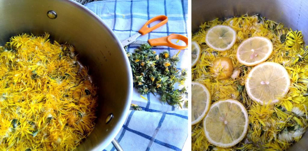 Paardenbloemen die met citroen tot siroop verwerkt worden.