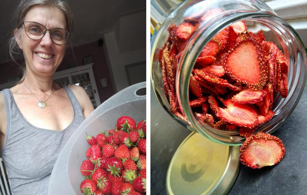 Aardbeien die verwerkt worden om te drogen.