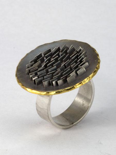 Zilveren aarde ring